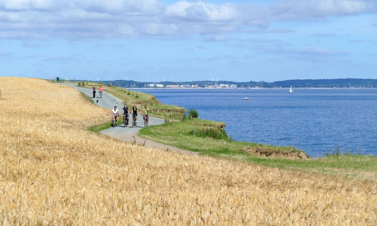 Radfahrer Ostsee Brodtener Ufer